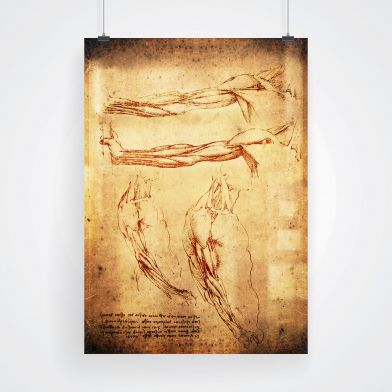 Poster, Armar da vinci stil 30x40 cm