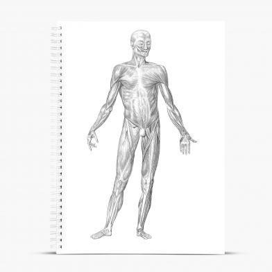 Anteckningsblock A4 - Anatomi